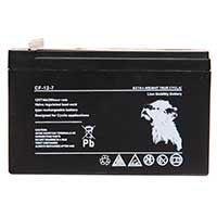 Lion VRLA 12V 7AH Sealed Battery (Spade)