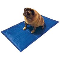 Streetwize Pet Cool Mat 90*50cm