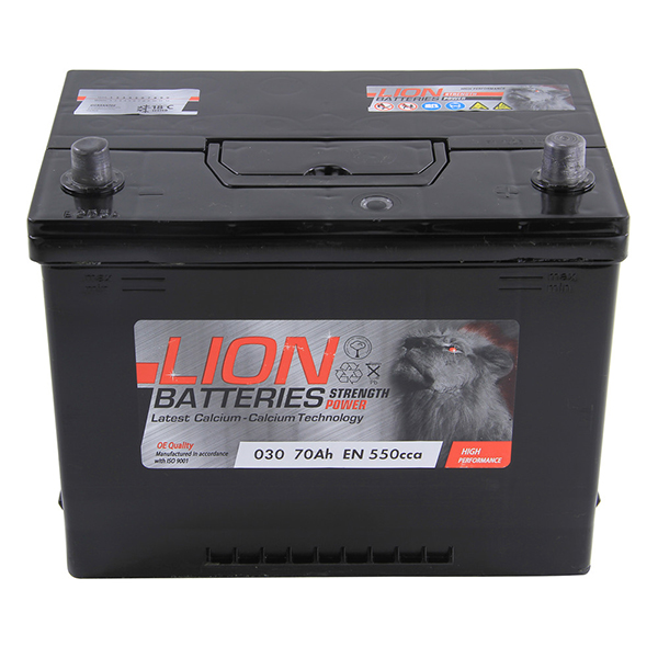 Lion 030 Battery - 3 Year Guarantee