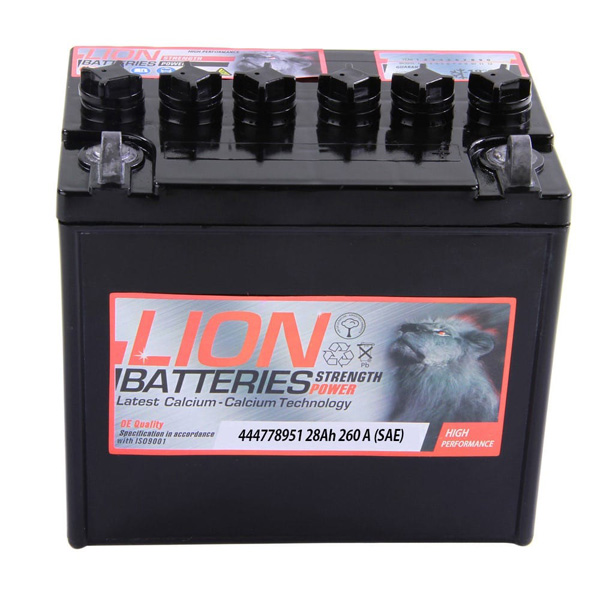 Lion 895 Battery - 2 Year Guarantee