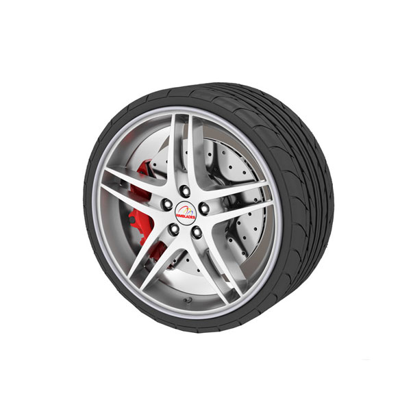 Alloy Wheel Protector Sliver