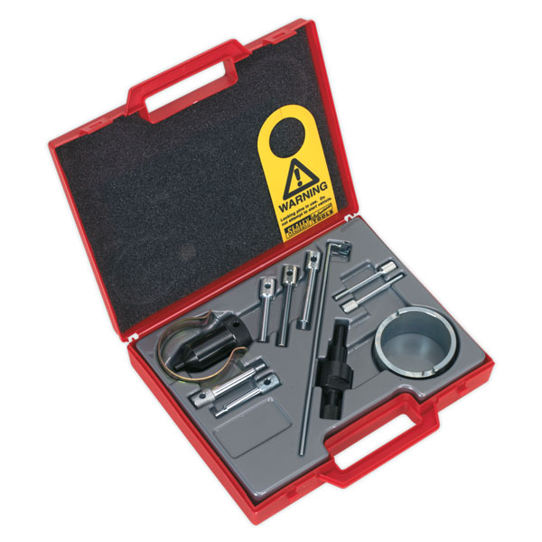 Sealey VS4825 Petrol Engine Twin Camshaft Setting/Locking Tool Kit-PSA EW